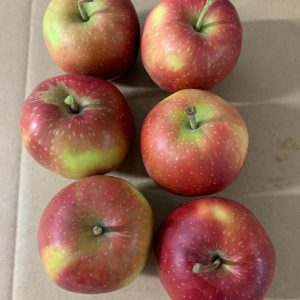 Red Apples - 6-Pack