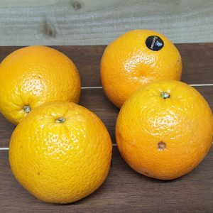 Large Oranges - Pack of 4