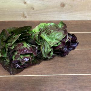 UK Red Gem Lettuce - 2 Pack