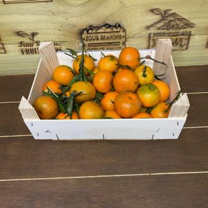 Shoe Box Clementines
